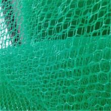 堆龍德慶三維土工網及用途歡迎選購泰安四方建材有限公司供應圖片