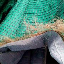 西塞山椰丝毯低价批发供应图片
