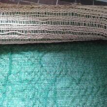 西双版纳椰丝毯报价,优质的椰丝毯图片