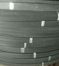 钢塑复合拉筋带30020B、百色土优游注册平台加筋带性能说明图片
