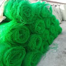 石嘴山三維植被網三維植被網護坡技術圖片