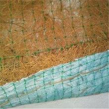 椰丝毯绿色植被垫专业生产厂家全国销售
