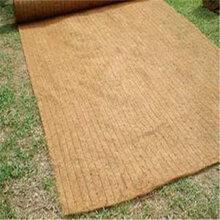 泰安四方建材厂家直供椰丝毯,绿色植被垫
