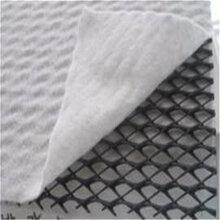 三维复合排水网专业生产厂家,全国销售