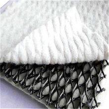 三维复合排水网专业生产价格优惠,品质保证,厂家直供