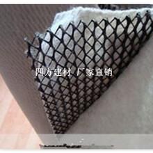 三维复合排水网的应用介绍,四方建材长期低价销售品质高图片