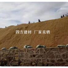 长期低价供应庆阳椰丝毯、四方建材销售,品质优图片