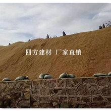 凉山椰丝植物纤■维毯供应,热卖椰丝植物纤维毯图片