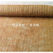 福州椰丝毯价格,优质的椰丝毯图片