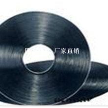 钢塑复合拉筋带厂家价格图片