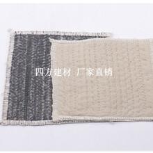 歡迎深圳膨潤土防水毯——(深圳//集團//股份有限公司)——-圖片