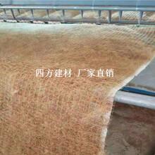东营植物纤维毯供应,优质的植物纤维毯图片