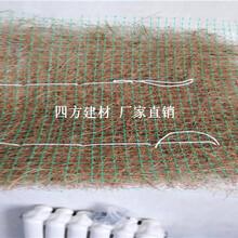 植物纖維毯,植被毯,椰絲毯山東供應商圖片