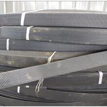 土工材料3200鋼塑復合拉筋帶現貨供應圖片