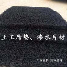 膨润土防水毯塑料盲沟,三维复合排水网,土工席垫厂家图片