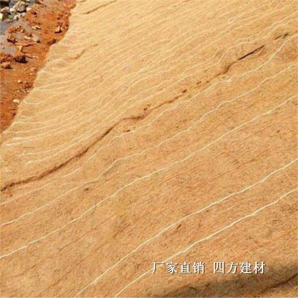蘭州椰絲毯報價,專業的椰絲毯