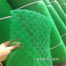 三維土工網墊植草必備,三維網墊的價格圖片