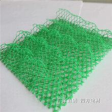 宝山7mm塑料土工网零售图片
