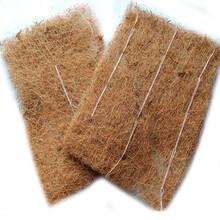 攀枝花椰丝植物纤维毯现货,正规的椰丝植物纤维毯图片