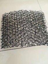 植草毯-榆林生态毯护坡施东森游戏主管(施东森游戏主管方案)图片