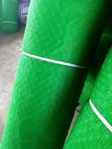 黃岡三維植被網聯系方式