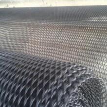 莱芜复合排水网供货商图片