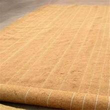 泉州椰絲毯公司實業公司圖片