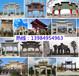 北京牌坊制作北京木牌坊制作北京石牌坊制作北京石雕牌坊