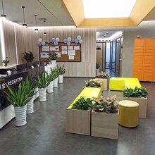 福田会展中心:小型办公室(创客空间)招租,费用全包