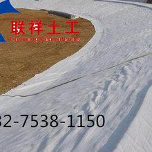 金昌防水毯GCL覆膜加强型防水毯质量好价格低图片