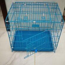 藍色寵物籠批發圖片