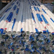聯塑蘇州PPR特級經銷商PPR給水管圖片