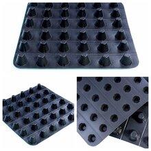 厂家供应车库顶板排水板凹凸型排水板