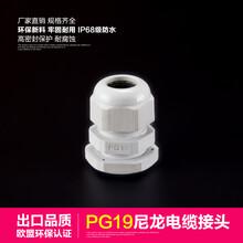 厂家批发PG19尼龙防水电缆接头内螺旋固定格兰头线缆固定头现货图片