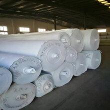 2018国标土工布价格厂家生产白色长丝土工布防水防渗涤纶土工布绿色工程土工布