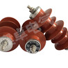 电站氧化锌避雷器