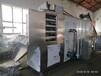 天津油炸膨化定制苦蕎片烘干機膨化食品烤箱設備