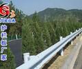 东莞公路防撞栏厂家三波护栏板波形护栏板一手货源
