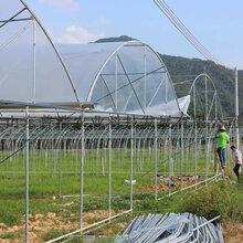温室大棚设计温室大棚安装温室大棚工程