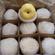 安徽砀山酥梨产地