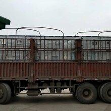 广元市GGD低压配电柜生产厂家、苍溪县户外XL-21动力柜批发图片