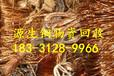 台湾省屏东县废铜废铝今日回收价格