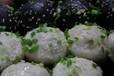 江蘇蘇州規模最大,品種最全的小吃培訓!蘇州京正!