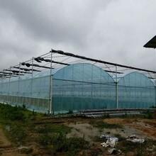 温室设备,遮阴棚,骨架设计,遮阳网系列图片
