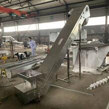 面粉袋装输送机食品厂袋装输送机定做图片