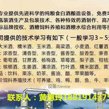 常州农资酿酒设备:唐三镜黄惠玲-白酒设备-不容易喝醉酒的小妙招