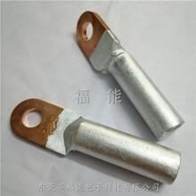 DTL銅鼻子銅鋁復合接線鼻子圓形冷壓端子福能商家圖片