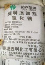 工业盐多少钱饲料级氯化钠价格优势山东一级代理商图片