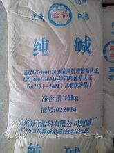 淄博海化纯碱99碳酸钠厂家直销电话图片