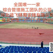 文山硅PU篮球场设计《有限公司欢迎光临》德飞体育图片
